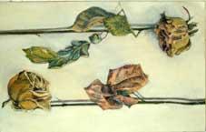 Dead Roses Oil on Canvas By Joy Godfrey