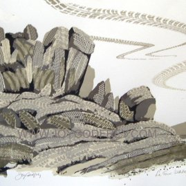 Le Tour, Ilkley, 2014 Silkscreen print on Arches 300 gsm paper By Joy Godfrey