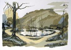 The Tarn Silkscreen Oil based inks on 310 gsm paper By Joy Godfrey